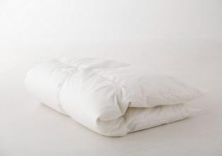 ポーランド・グダニアン産 マザーグースダウン95% 洗える羽毛布団